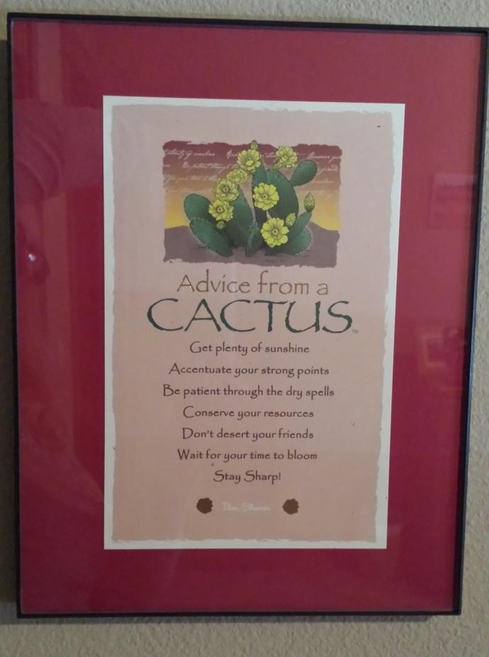 cactus edit